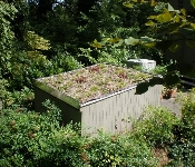 Green Roof on Shed, Annapolis